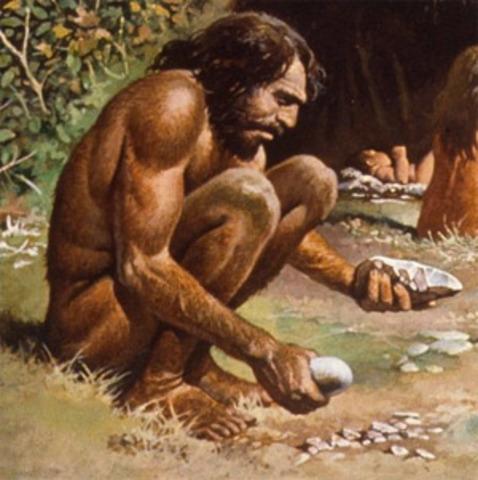 """Homo sapiens: (""""hombre racional"""")"""