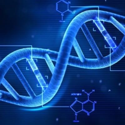 Blueprint of Life - scientists timeline