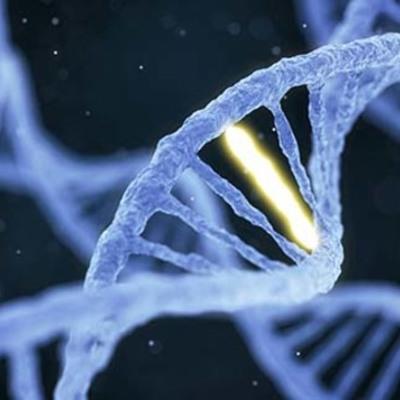 Genetics Throughout History timeline