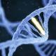 Alzheimers genetics facts inline 0
