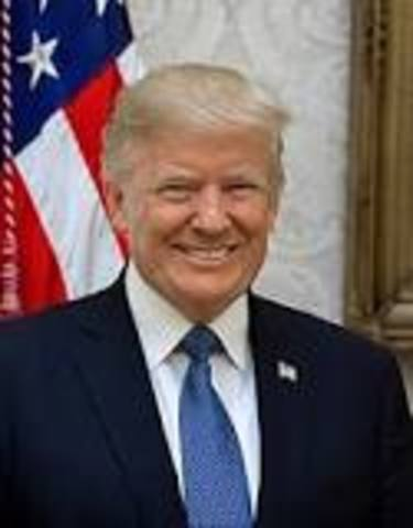 •Donald Trump Elected President