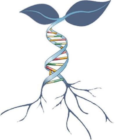 Beneficios de la biotecnología