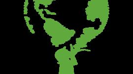 A POLÍTICA NACIONAL DE EDUCAÇÃO AMBIENTAL timeline