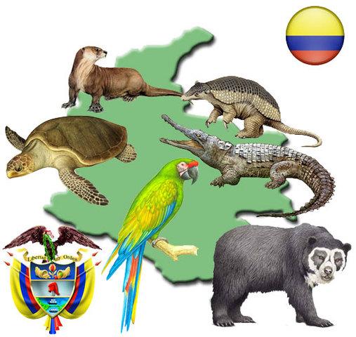 ANIMALES EN VÍA DE EXTINCIÓN COLOMBIA