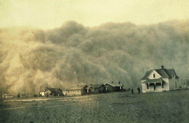 Dust pneumonia