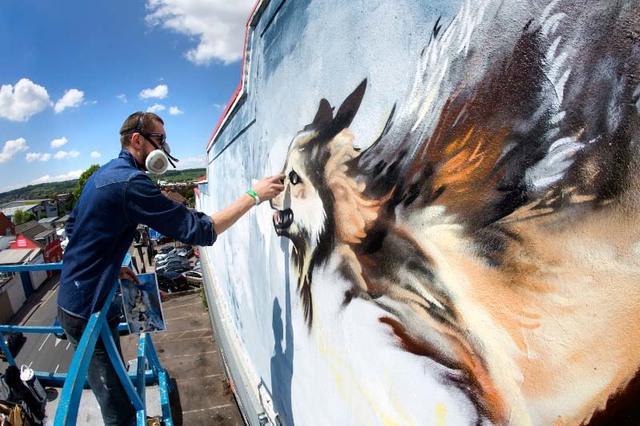 Graffiti Celebrations/Mural Programs