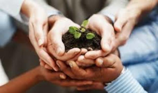 Ley Federal de Responsabilidad Ambiental