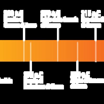 Linea del tempo- Favretto Giulia timeline
