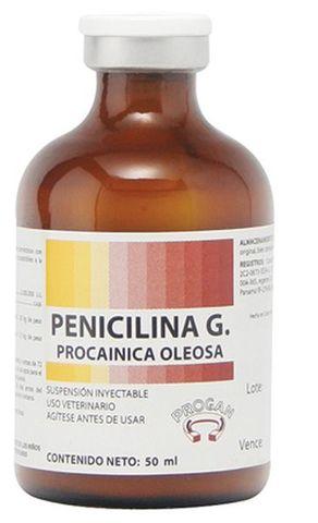 La penicilina