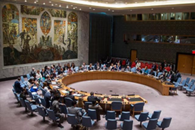 Reunión de ALAPE con las Naciones Unidas