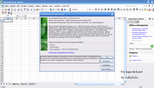 Excel 2003 (11) -  Microsoft Office 2003