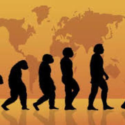 Teorías y aportes de la evolucion timeline