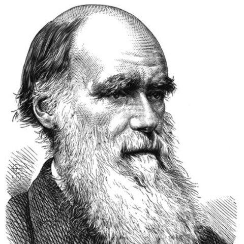 """La publication de """"L'Origine des espèces"""" par Charles Darwin jette les bases de la théorie de la sélection naturelle."""