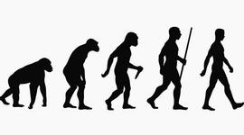 TEORÍAS DE LA EVOLUCIÓN timeline