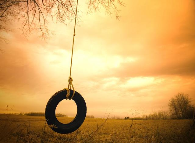 Bruno builds a tire swing.