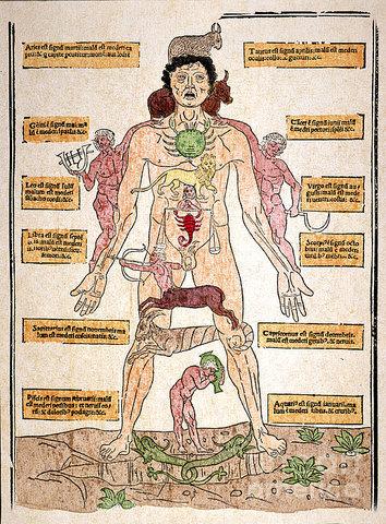 El cuerpo como forma de medir