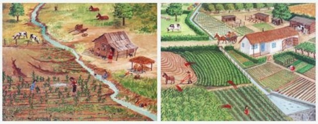 Desarrollo agropecuario