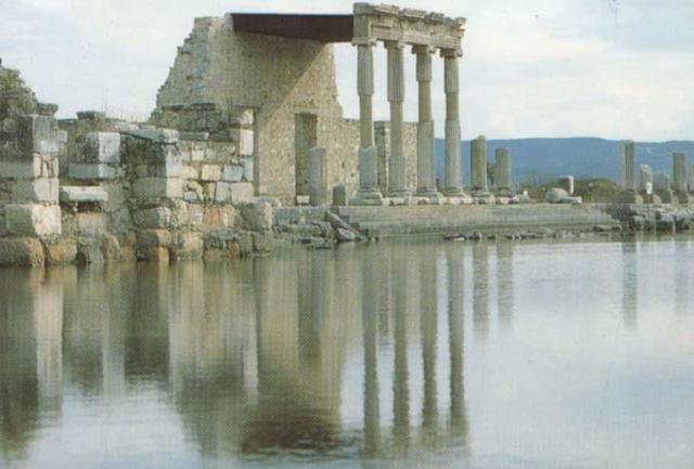 Escuela de Mileto