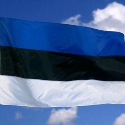 Эстонская республика timeline