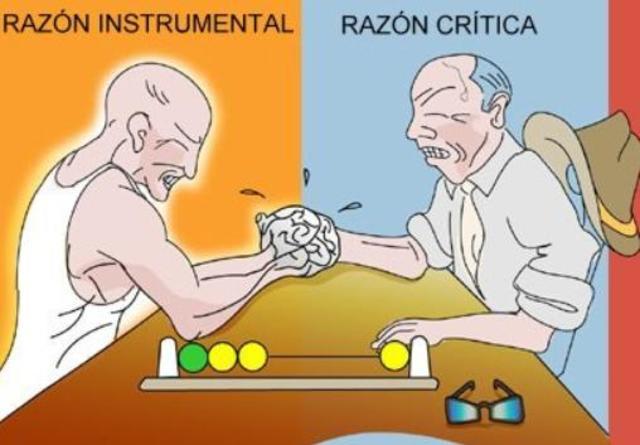 racionalidad instrumental
