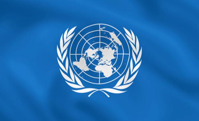 La Organización de las Naciones Unidas (ONU)