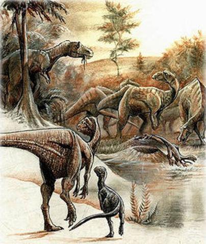 Periodo Cretacico