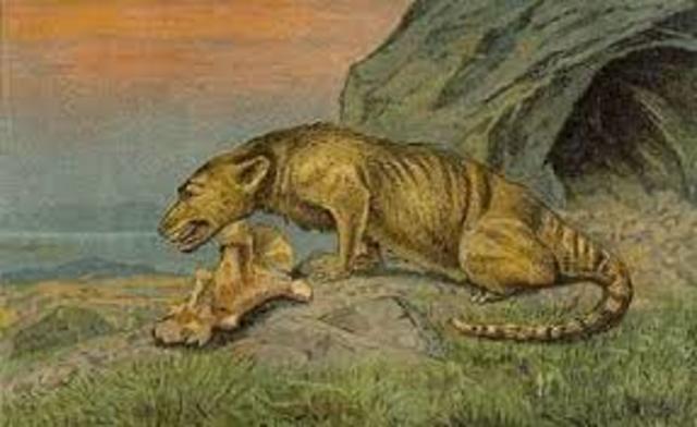 Periodo Eoceno