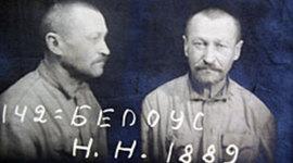 Реакция крестьян на коллективизацию на примере дневника Нестора Белоуса timeline