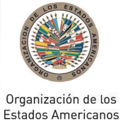 Bolivia: Misión de Observación Electoral