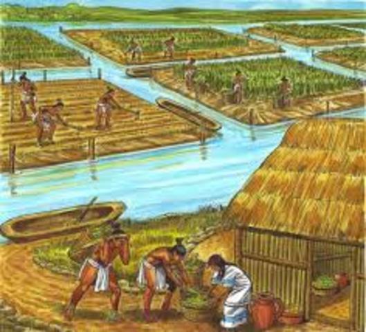 Cambios de agricultura