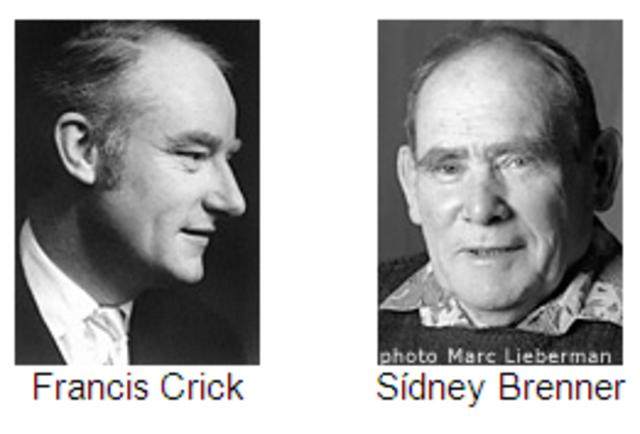 Francis crick biografia resumida yahoo dating