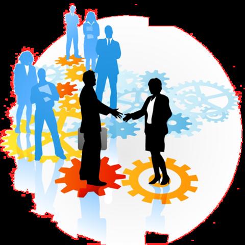 iniciativa de institucionalización y profesionalización