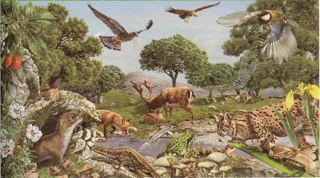 "Arthur Tansley termino ""ecosistema"" (Inglaterra)"