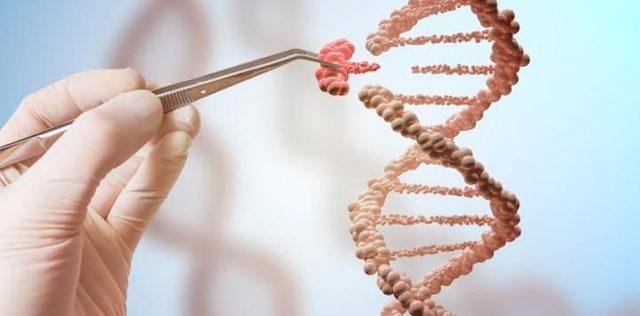 Avances y Desarrollo de la Biología timeline | Timetoast ...