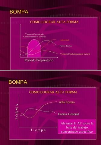 MODELO DE LARGO ESTADO DE FORMA DE BOMPA