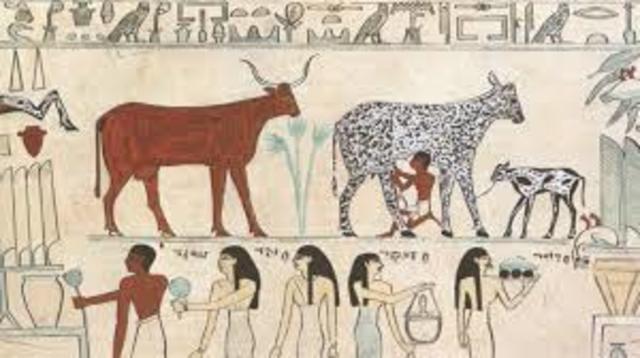 La domesticación de animales en Egipto