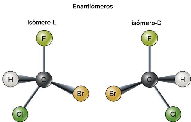 Primeiro descubrimento dos isómeros