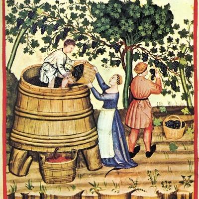 История виноделия в России timeline