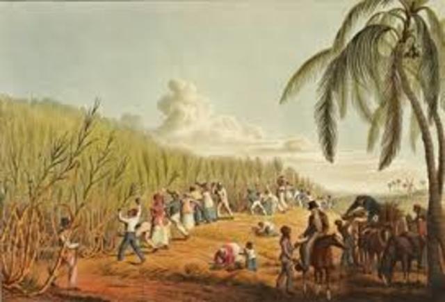 Caribbean Colonies.