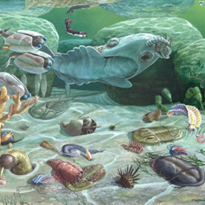 Era paleozoica timeline
