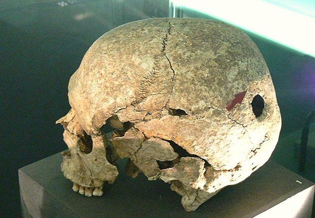 cráneos hallados en sitios neolíticos (Europa y America)
