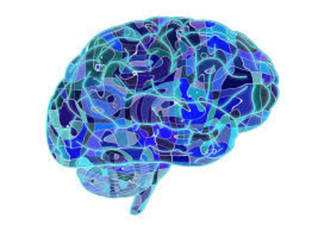 La neuropsicología vigente.
