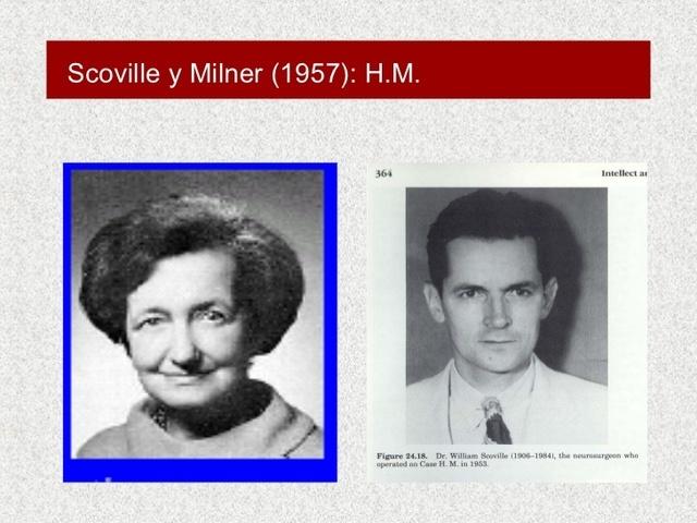 LA PSICOLOGÍA EXPERIMENTAL: Scoville y Millner