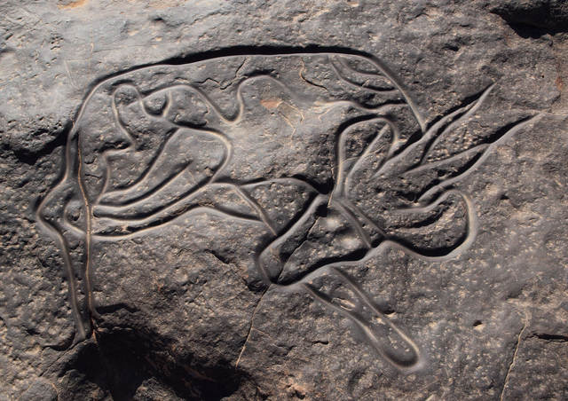 Rock engraving/carving of a prone antelope (Cave Art)