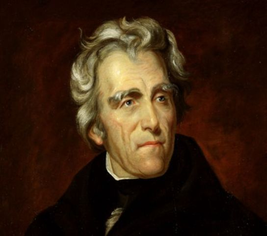 Andrew Jackson Elected President (1st Term)