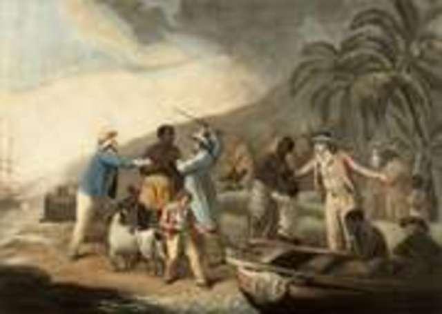 Module Five Lesson Two Assignment One Transatlantic Slave Trade