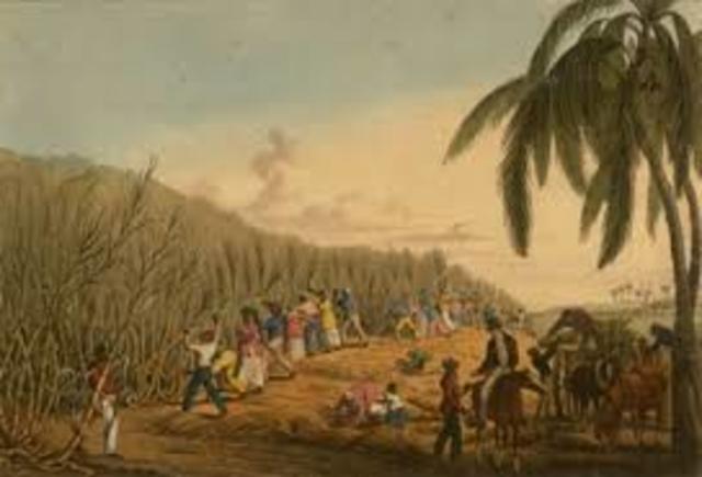 Caribbeans Colonies