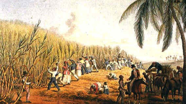 The Caribbean Colonies