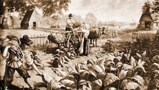 Chesapeake colonies: Virginia: Headright system