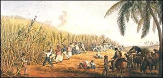 Colonial Economies